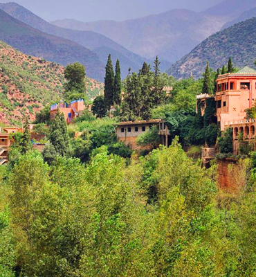 Full Day Trip To Ourika Valley From Marrakech